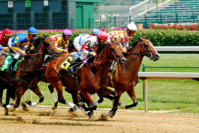 churchill_downs_racehorses